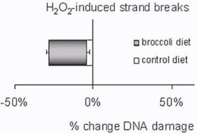 Less DNA Damage Test Tube