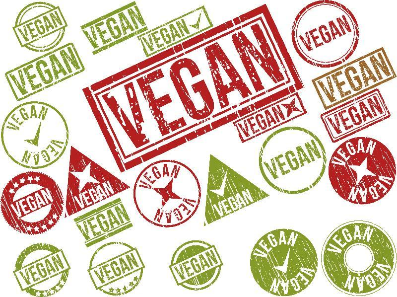 Top Male Vegan Bloggers