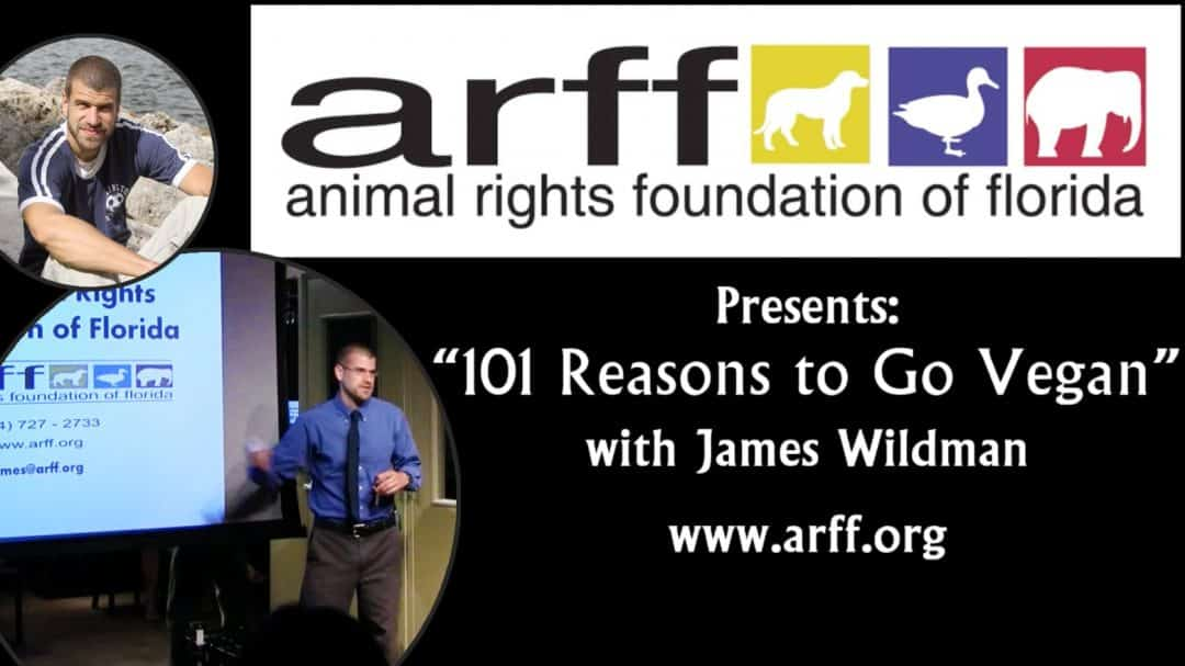 101 Reasons To Be Vegan Video