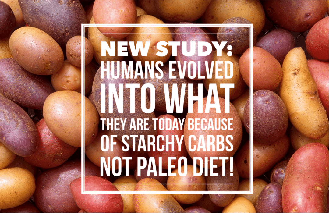 New Study: Starchy Carbs Not Paleo Diet Enabled Our Brains To Grow