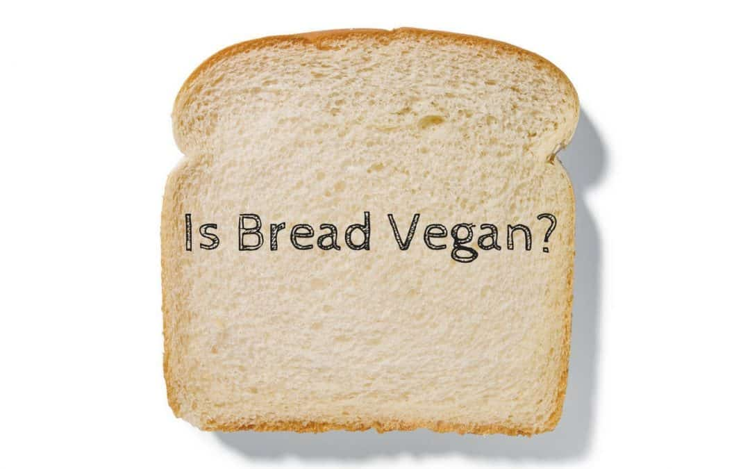 Is Bread Vegan?
