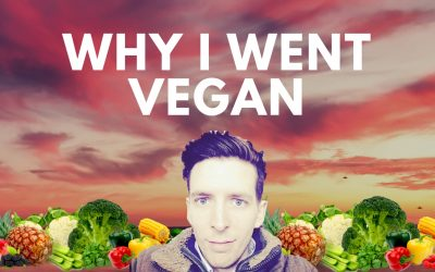 Why I'm Vegan